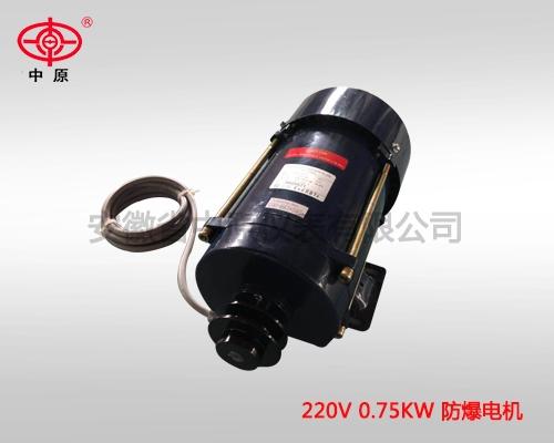 220v 0.75kw 防爆电机